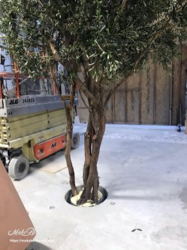 artificial Mediterranean olive trees