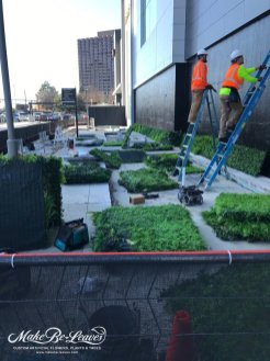 Phipps-Plaza-artificial-green-wall-installation