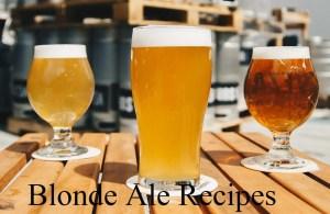 Blonde Ale Recipes