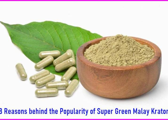 8 Reasons behind the Popularity of Super Green Malay Kratom