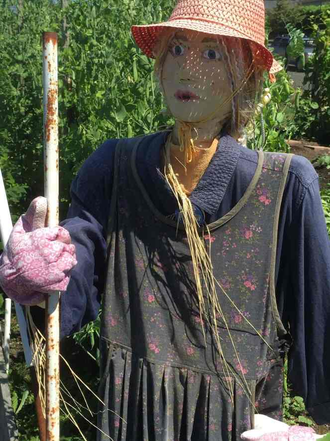 How To Make A Scarecrow Everyone Will Love Make It A Garden