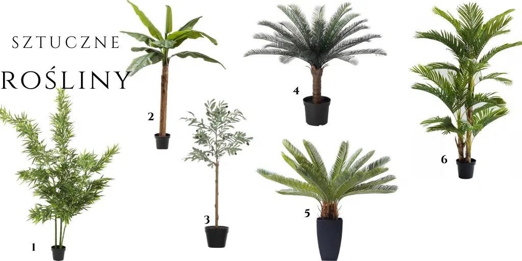 sztuczna palma w doniczce sagowiec drzewko oliwne