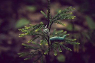 engagement_ring_photo