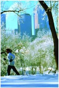 Winter Run, Minneapolis.