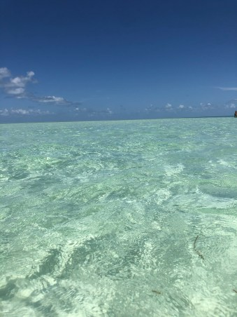 Turquoise water key west sandbar