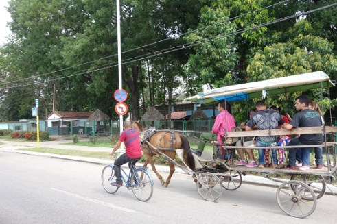 Horse and Cart on the Road in Camaguey