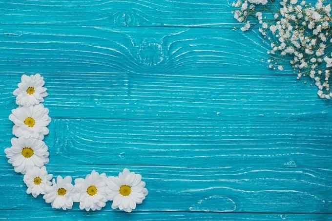Γαλάζια Ξύλινη Επιφάνεια με Λουλούδια