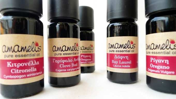 Essential Oils Amamelis