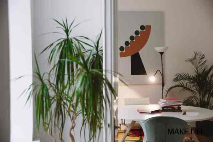 green plant beside white table - Ανανέωση Σπιτιού: Μικρές παρεμβάσεις για μεγάλες αλλαγές