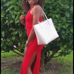 Hi Loves As We Officially Began Summer Happy Summer That Is Fill With Lots Of Bright Colors Inside Your Makeup Bags And Wardrobes By The Way The Look That I Am Inspired To Share Today Is A Simply Red Summer Dress This Dress Captivate My Unique Style