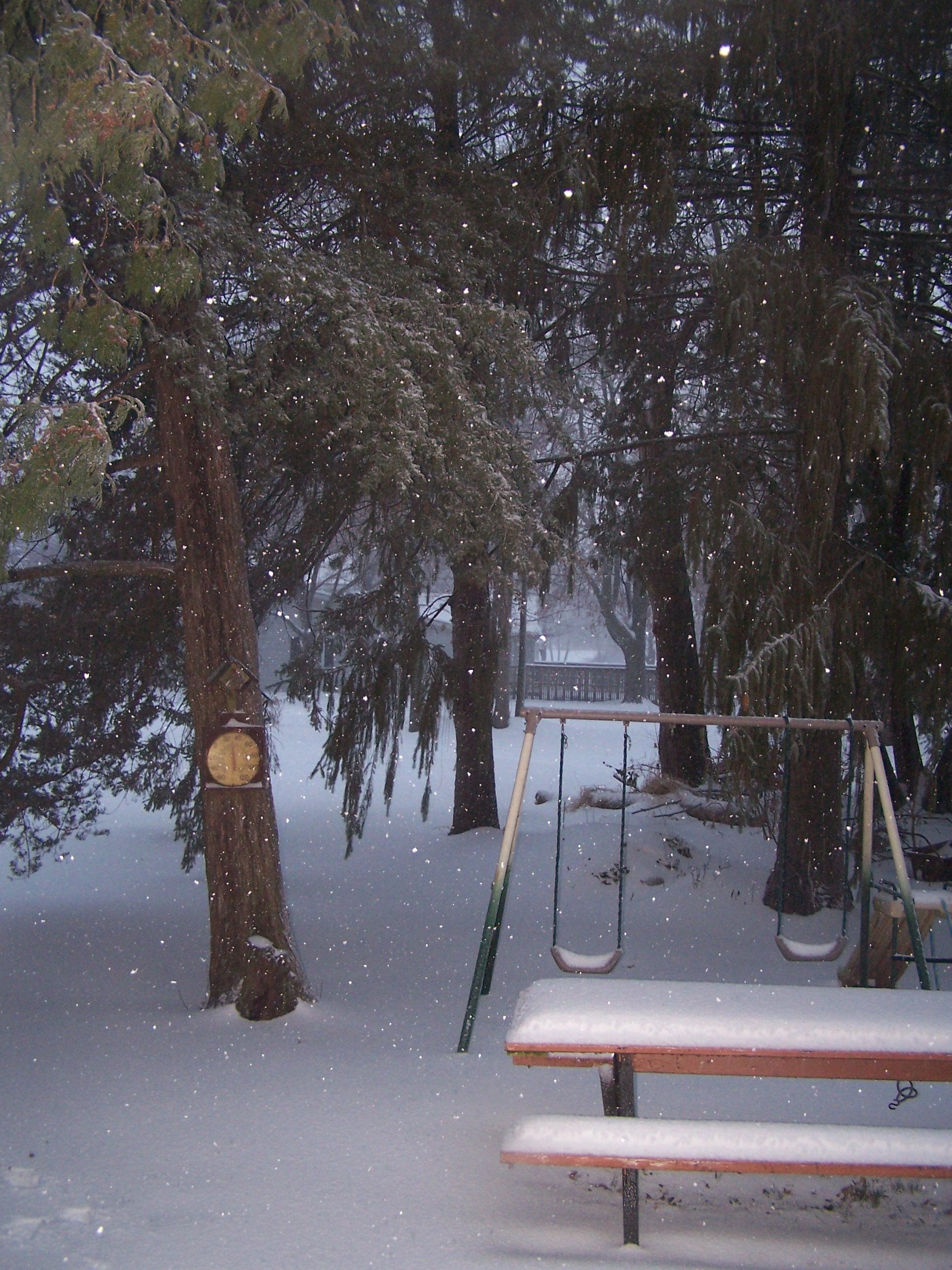 Our snowy back yard.