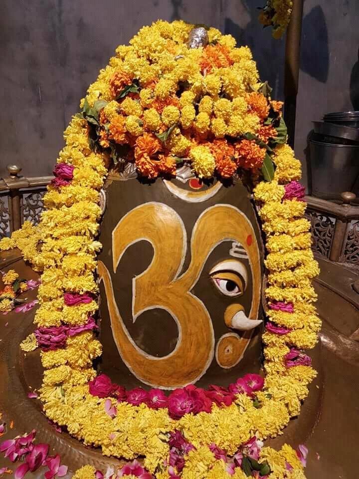 श्रृंगार दर्शन शिव मंदिर नलाश रजपुरा पटियाला पंजाब से