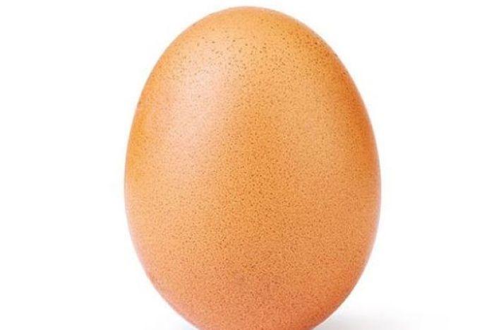 Vitamin B rich foods Egg in Hindi