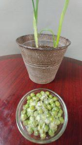 Green Onion Pea Salad