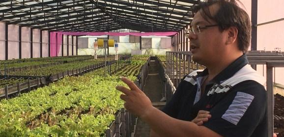 【人物專訪】轉換跑道,資訊工程師搖身一變成為農場主人-陳柏宏