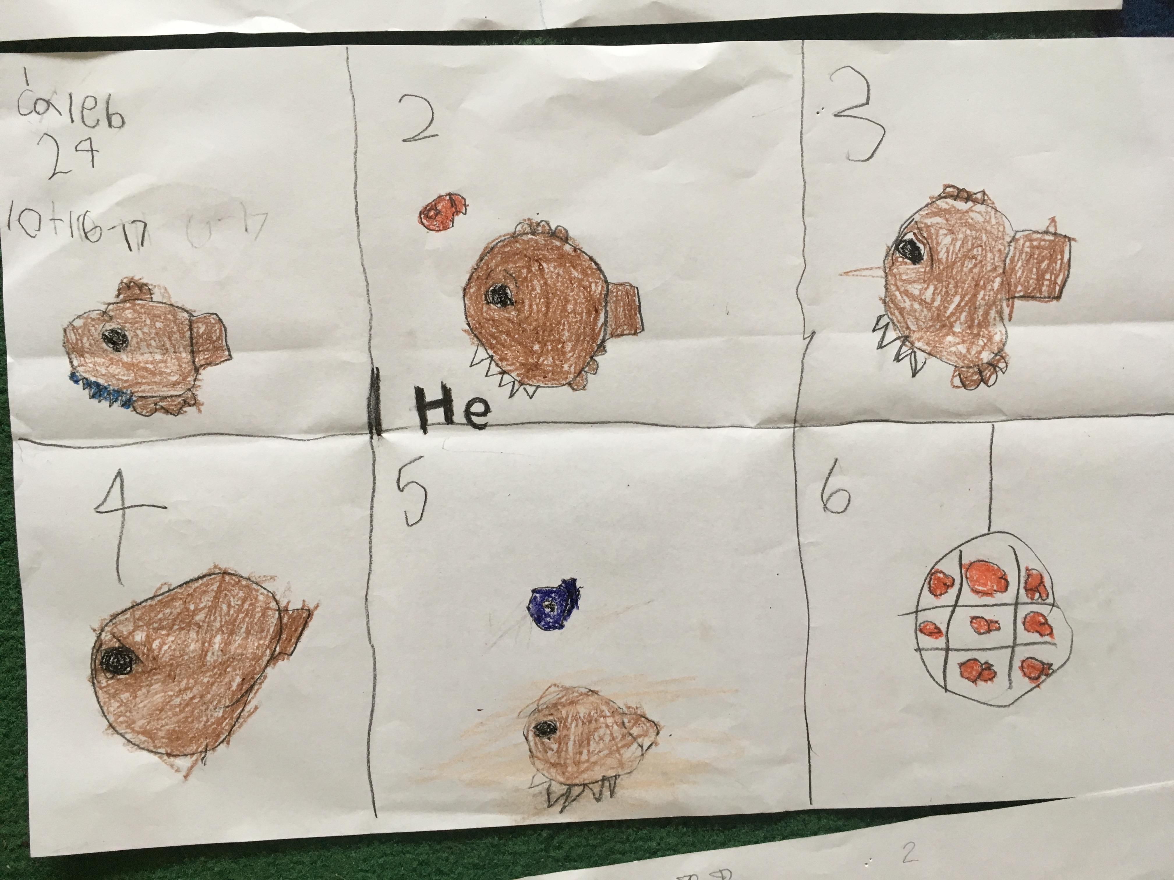 Big Al By Andrew Clements 1st Grade
