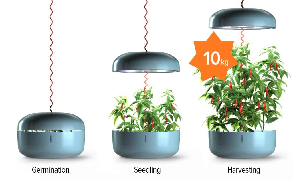 Plantui idroponica