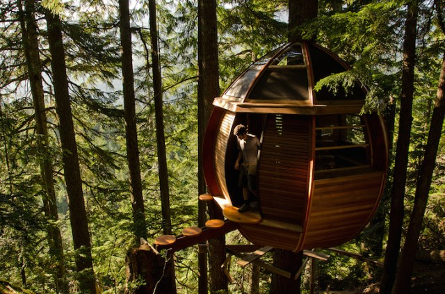 Hemloft tree house