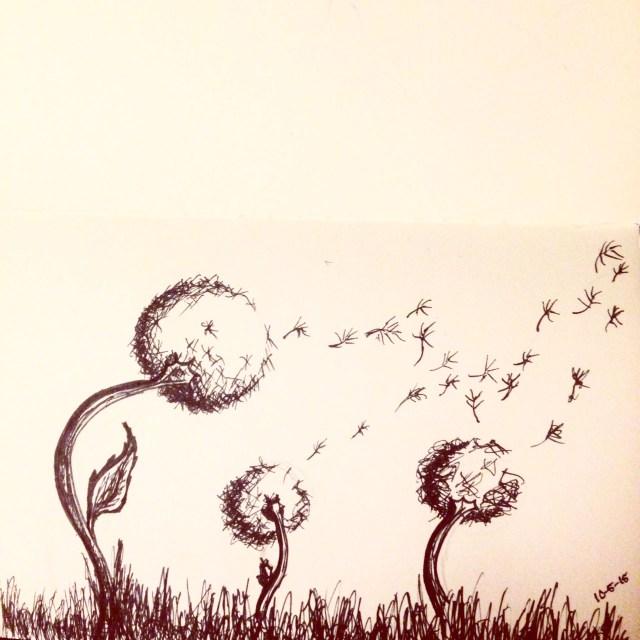 dandelion  drawing inktober