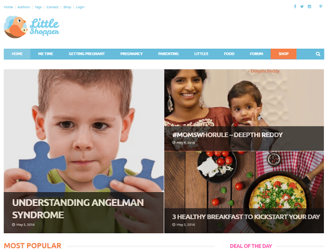 The Little Shopper - Website Review