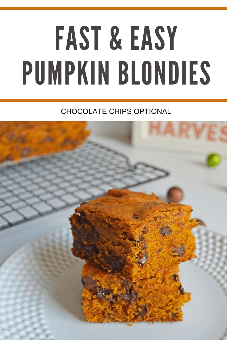 Easy Pumpkin Blondies Recipe