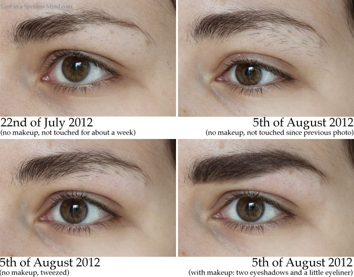 How To Grow Out Your Eyebrows Lina Does Lashes
