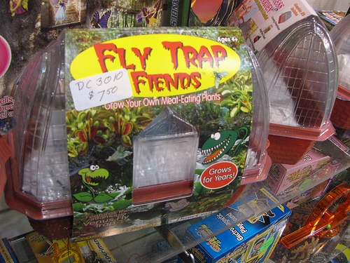 "Venus fly traps and ""grow your own lilypad"" kits"