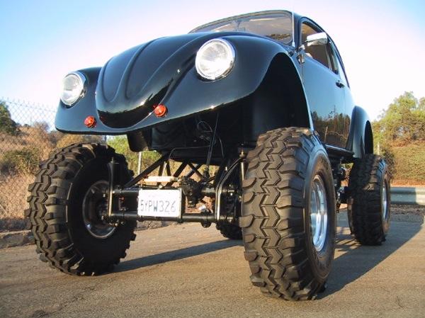 Monster beetle!