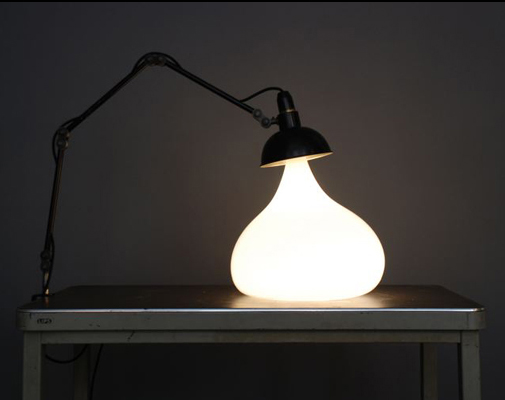 Lamps transform to fit their natural habitat
