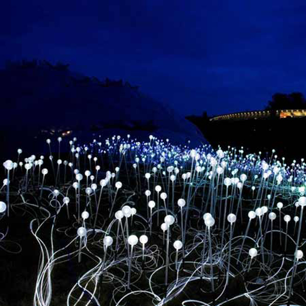 Lights bloom in Cornwall