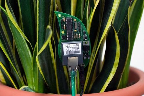 """Open Source"" plant watering…"