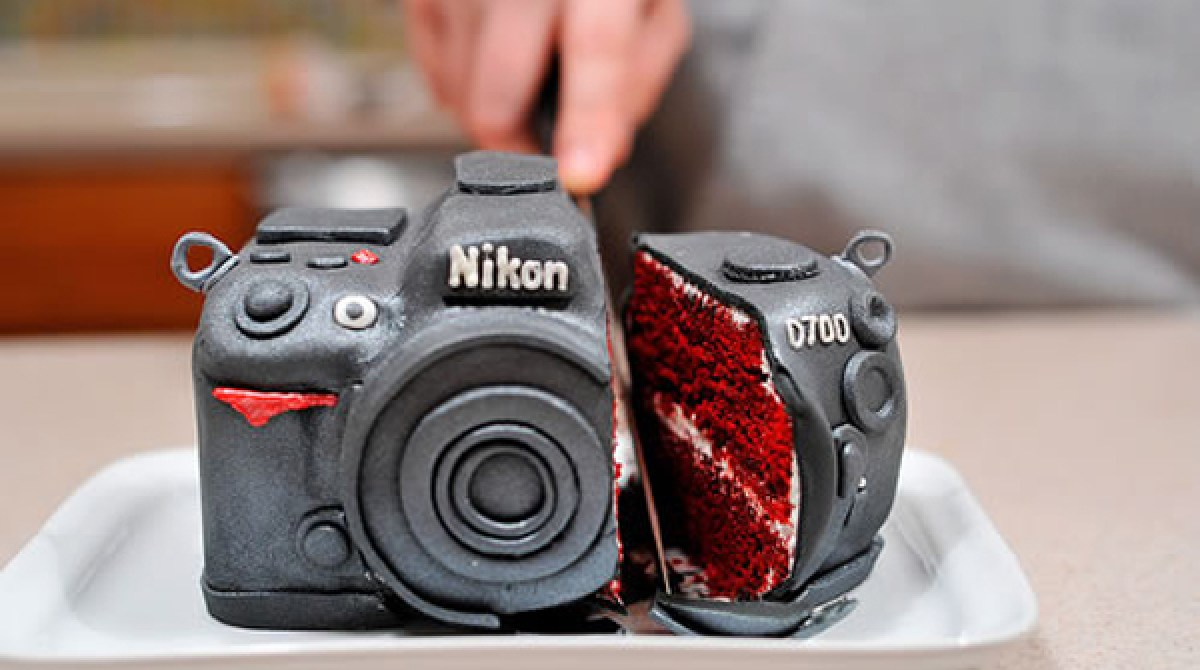 Awesome Birthday Cake Made Into The Shape Of Camera Will Make You Happy To Funny Birthday Cards Online Benoljebrpdamsfinfo