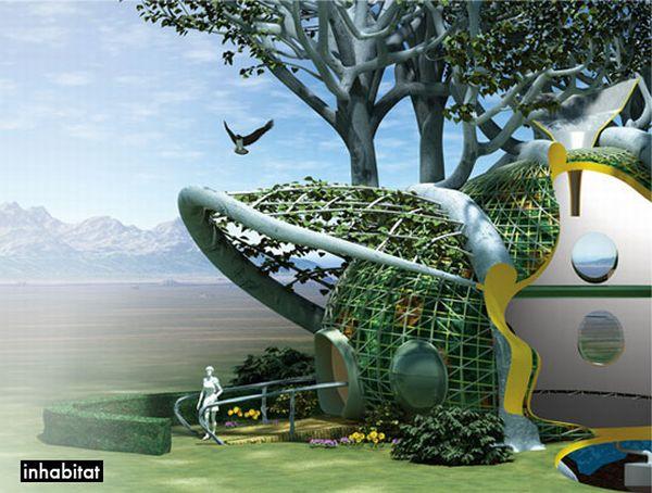 Grow a treehouse