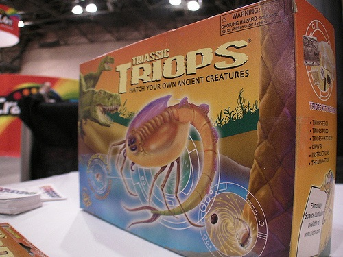 Triops – They kick sea monkey butt
