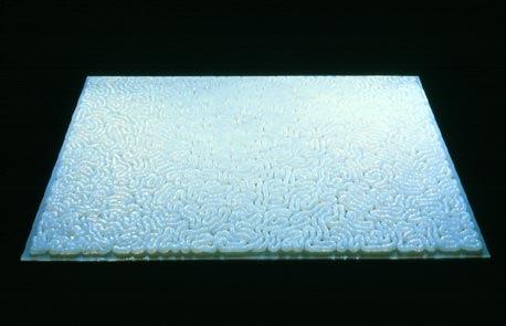 Mona Hatoum's Entrails Carpet