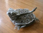 Roomba horny toad wool cosy