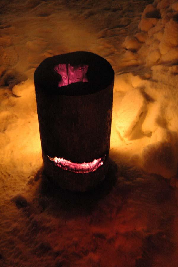 Self-immolating wood oven