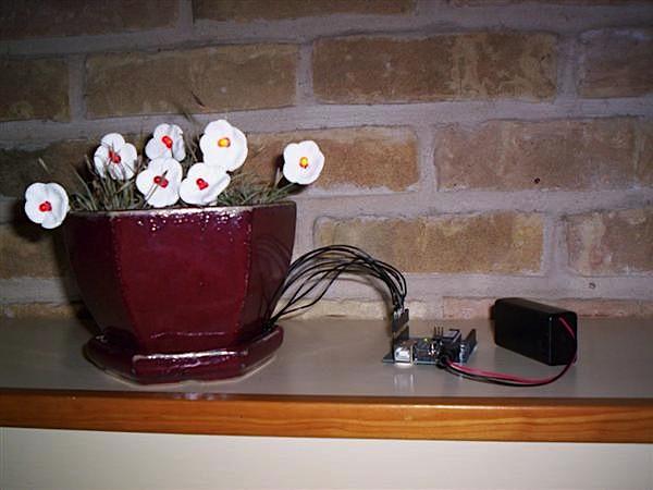 Ambient LED flowerpot clock