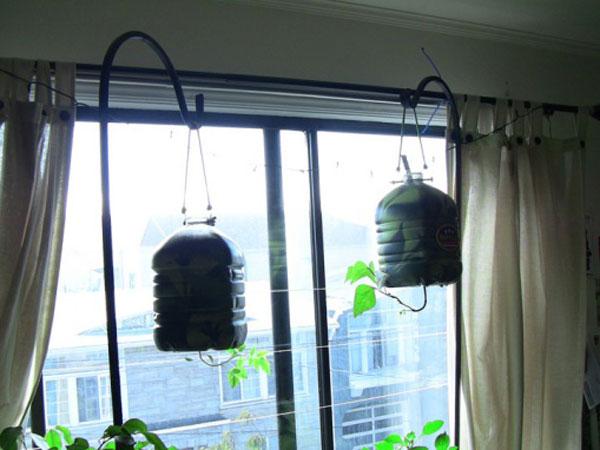 Gomistyle's Urban Window Garden