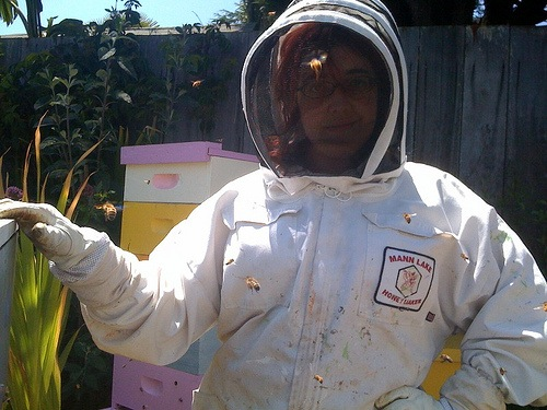 Make: Holiday Gift Guide 2009: Beekeeper Gift Guide