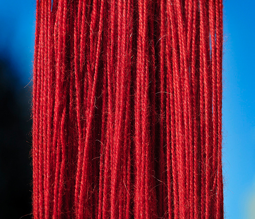 Brilliant red dye made from insects