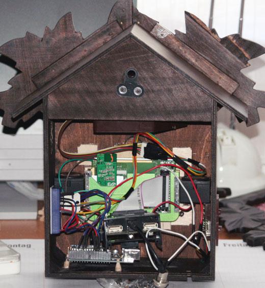 Cuckoo clock shows the tweets