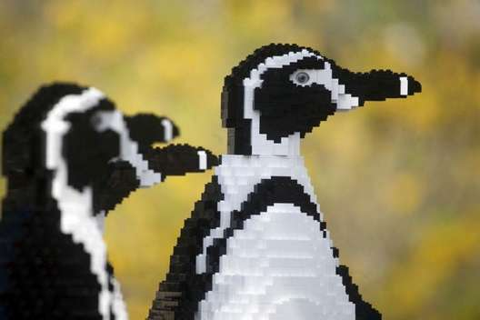 Endangered Lego creatures invade zoo