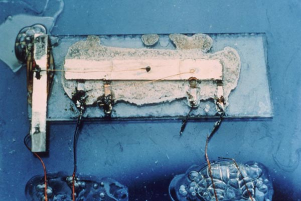 Meet the integrated circuit