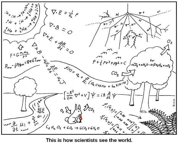 How scientists see the world