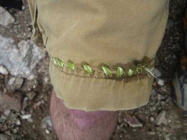 MacGyver Mending: In the desert, try agave