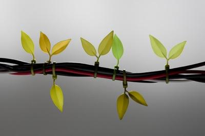 Leafy zip ties