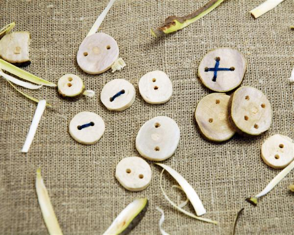 Wooden buttons from fallen branches