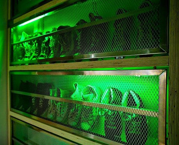 Alien specimin case re-purposed as shoe rack
