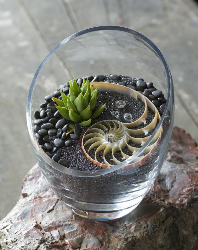 Project Excerpt: Terrarium Craft, by Amy Bryant Aiello & Kate Bryant